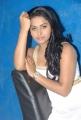 Rachana Maurya Latest Hot Pictures