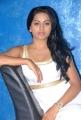 Rachana Maurya Hot Pictures