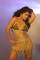 Telugu Actress Rachana Maurya Hot Spicy Stills