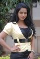 Rachana Maurya Photoshoot at Sri Vasavi Vaibhavam Platinum Disc Function