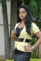 Rachana Maurya Latest Photoshoot Stills