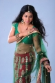 Rachana Mourya Spicy Pics in Green Transparent Saree