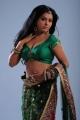 Rachana Mourya Hot Photo Shoot in Green Saree