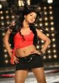 Okkadine Rachana Mourya Hot Item Song Photos