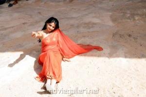 Ragada Anushka Hot Pics