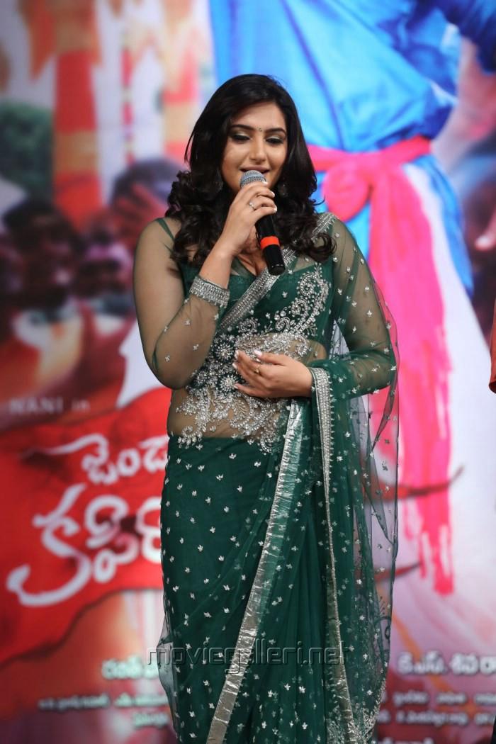 Ragini Dwivedi Hot Saree Stills @ Janda Pai Kapiraju Audio Release ...