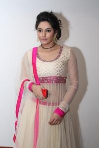 Actress Ragini Dwivedi Photos @ South Scope Calendar 2014 Launch