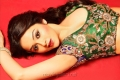 Tamil Actress Ragini Nandwani Hot Photoshoot Stills