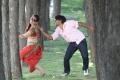 Srinivas, Aksha Pardasany in Rye Rye Movie Hot Stills