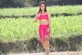 Actress Aksha Pardasany in Rai Rai Movie Hot Stills