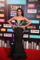 Actress Raiza Wilson Photos @ South Indian International Movie Awards 2019 Day 2