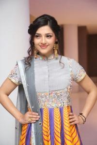 Mehreen Kaur Pirzada @ Raja The Great Success Meet Stills