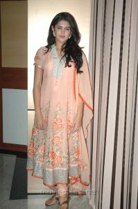 Deeksha Seth @ Rajapattai Audio Launch Pictures
