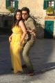 Rajapattai Movie Hot Stills