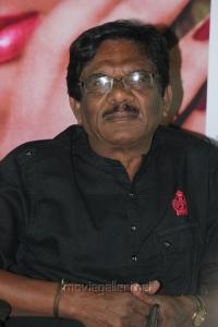 Director Bharathiraja @ 16 Vayathinile Trailer Launch Photos