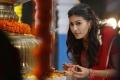 Rajugadu Movie Heroine Amyra Dastur Photos HD