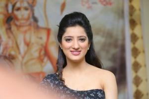 Actress Richa Panai Interview Stills about Rakshaka Bhatudu Movie