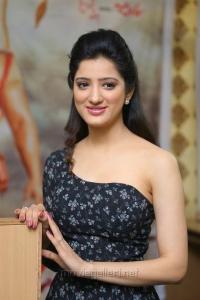 Rakshaka Bhatudu Actress Richa Panai Interview Stills