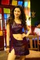 Rakshaka Bhatudu Heroine Richa Panai Hot Pics