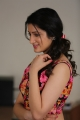 Rakshaka Bhatudu Heroine Richa Panai Pics