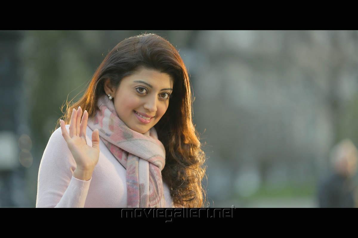 Suriya Movie Stills Photos Wallpapers: Actress Pranitha In Rakshasudu Movie