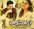 Bellamkonda Sreenivas, Anupama in Rakshasudu Movie Thrilling Blockbuster Posters