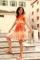 Actress Rakul Preet Singh Photos in KICK 2 Movie