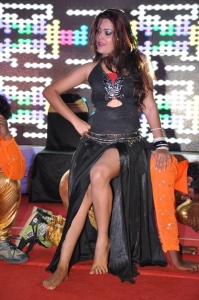 Ram Leela Movie Audio Success Meet Stills