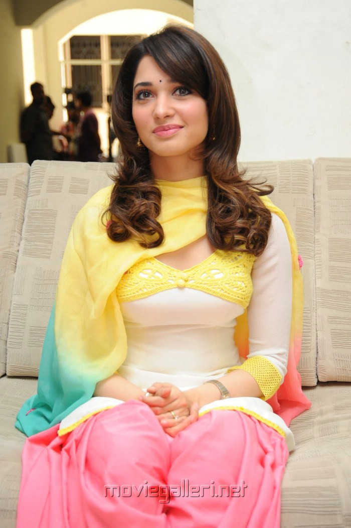 tamanna endukante premanta press meet saritha