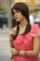 Actress Genelia in Ramcharan Tamil Movie Stills