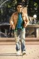 Ramcharan Tamil Movie Stills