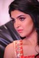 Deeksha Seth at Rebel Audio Release Function Stills