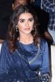 Actress Malavika Sharma @ Red Movie Success Celebrations at Vizag Photos