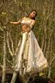Actress Regina Cassandra Hot Stills in Nakshatram Movie