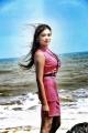 Rangeela Movie Actress Rekha Boj Hot Stills