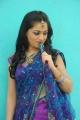 Actress Reshma in Saree Photo Shoot Stills