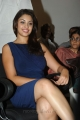 Actress Richa Gangopadhyay Hot Pictures @ Bhai Audio Release
