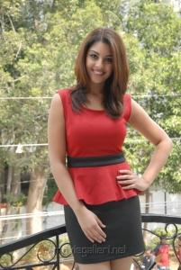 Telugu Actress Richa Gangopadhyay Pictures at Mirchi Success Meet