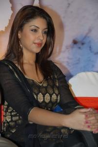 Richa Gangopadhyay Hot Photos at Mirchi Success Meet