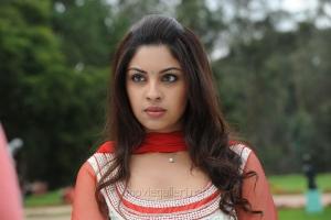 Actress Richa Gangopadhyay Cute Wallpapers in Sarocharu Movie