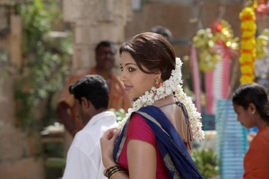 Richa Gangopadhyay Saree Hot Stills