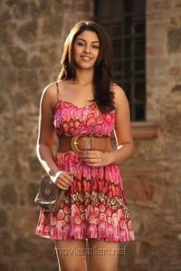 Actress Richa Gangopadhyay in Mirchi Movie Hot Images