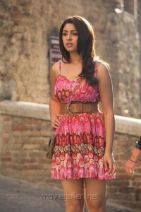 Mirchi Movie Actress Richa Gangopadhyay Hot Images