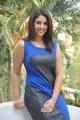 Actress Richa Gangopadhyay New Hot Photos in Sleeveless Blue Dress