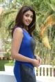 Actress Richa Gangopadhyay in Blue Dress Hot Photos