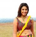 Actress Richa Gangopadhyay Hot Spicy Photos