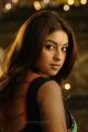 Murattu Singam Movie Heroine Richa Gangopadhyay New Photos