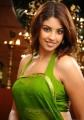Actress Richa Gangopadhyay New Hot Photos