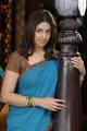 Actress Richa Gangopadhyay Photos in Murattu Singam Tamil Movie
