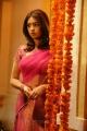 Richa Gangopadhyay Hot Saree Photos in Murattu Singam